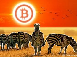 Tens of Thousands of Merchants Accept Bitcoin in South Africa as Government is Friendly