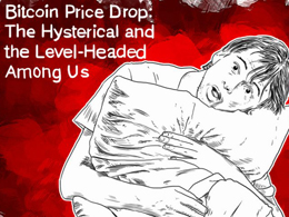 Bitcoin Price Drop: The Hysterical and the Level-Headed Among Us