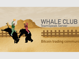 Whale Club: The Trading Room That Loves Bitcoin Price Declines