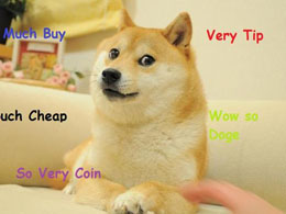 Five Reasons Why the Dogecoin Price Should Rebound Soon