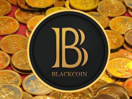 Interview with Blackcoin: Succeeding in the Alt-Market