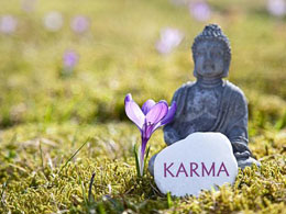 Karma Price in Peril After Developer Announces Departure