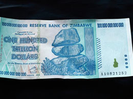 Zimbabwean Dollar Now Collapses, What Direction Should They Go?